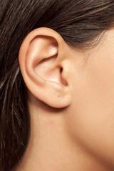 Fototapeta close-up of female ear obraz