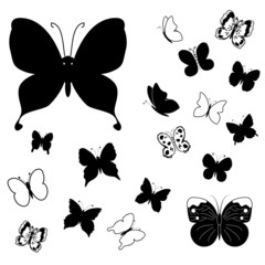 Collection of flying butterflies silhouettes