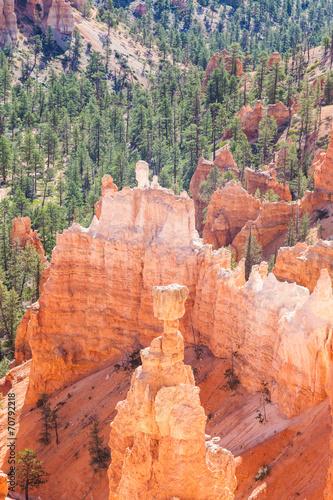 Wall mural Bryce Canyon