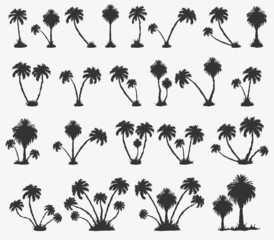Vector set of solar palm beach