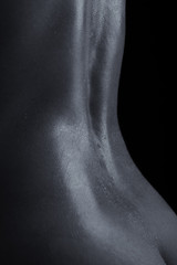 Body scape of a nude woman with tuned muscle back on artistic co