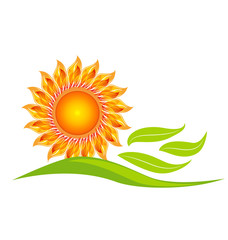 Sun flower icon design vector illustration