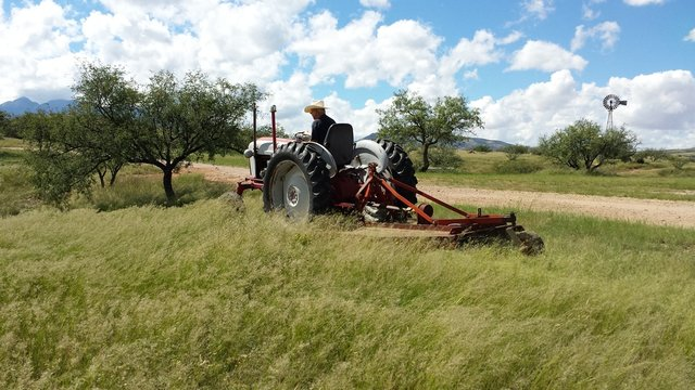 Mowing in the Arizona grasslands with tractor and brushhog