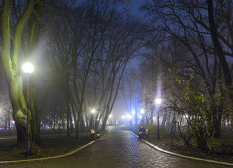 The avenue of autumn city park at night