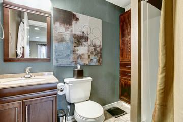 Aqua tone bathroom with brown cabinet and mirror