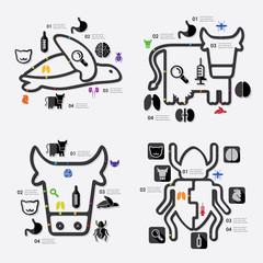 veterinary infographic