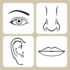 Set of faces part