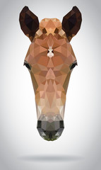 Wall Mural - Horse head vector isolated geometric modern illustration