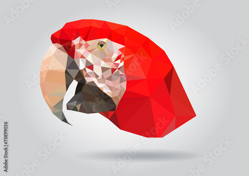 Wall mural Macaw Parrot head vector isolatet geometric illustration