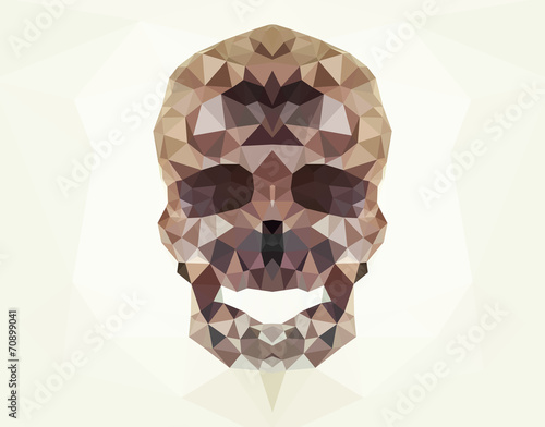 Wall mural Human skull vector geometric modern illustration