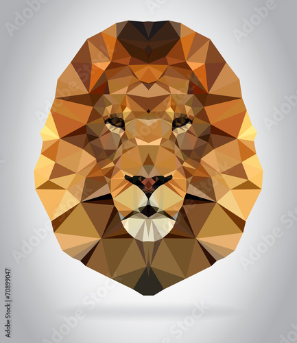 Wall mural Lion head vector isolated geometric illustration