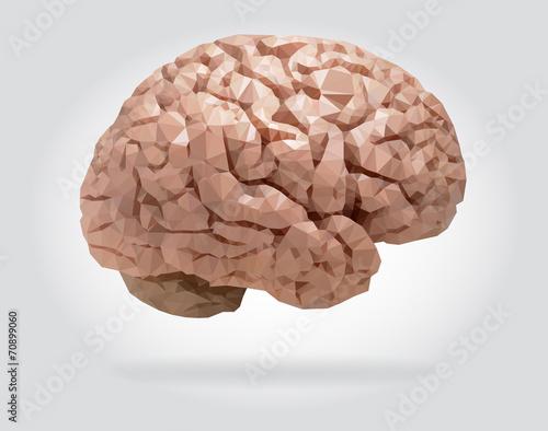 Wall mural Human brain vector isolated geometric illustration