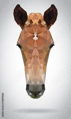 Wall mural Horse head vector isolated geometric modern illustration