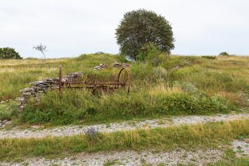 Old hay tedder