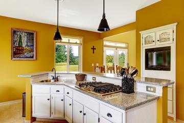 Farm house interior. White ktichen cabinet with granite top