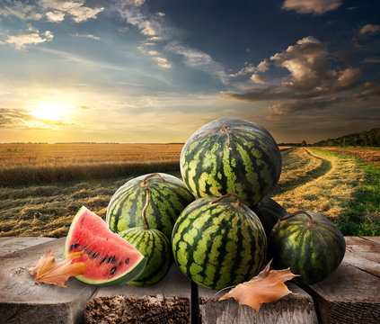 Watermelons on a table