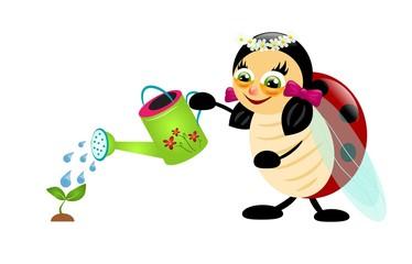 Ladybug watering plant