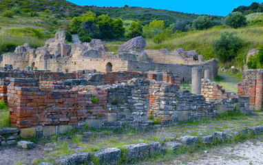ruin ancient city Velia.  Ascea - Italy