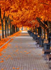 Осенний пейзаж в парке