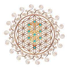 Flower of Life, Tree of Life, Kabbalah, Sephiroth