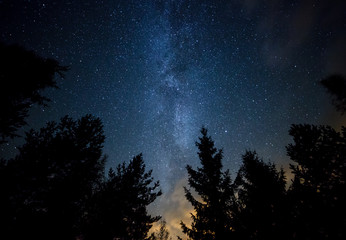 Fotorolgordijn Nacht Milky Way over the Forest