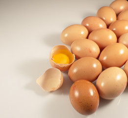 Eggs group isolated white background