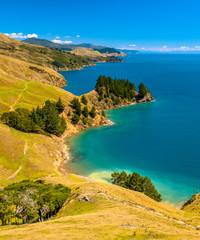 Wall Mural - Blue water at Marlborough Sounds, South Island, New Zealand