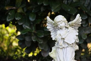 Engel mit Harfe vor grünem Hintergund