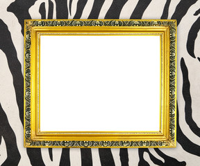 blank golden frame  with zebra texture