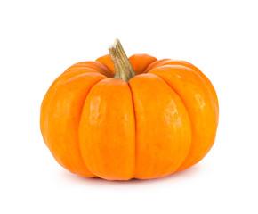 Mini Orange Pumpkin Isolated on White