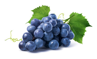 Blue grapes dry bunch isolated on white background