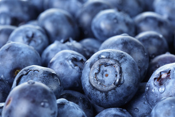 freshly washed blueberries close up photo