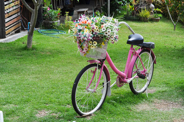 The lovely bicycle