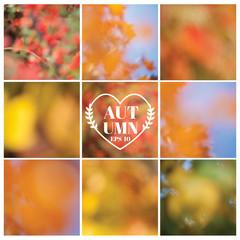 Vector Set: Autumn Backgrounds - set of 9 beautiful patterns