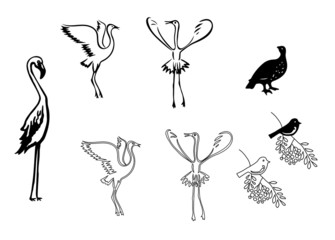 silhouettes of birds - vector set