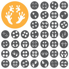 Traces of animals birds footprints icons set. Vector Illustratio