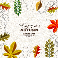 Autumn background abstract poster, Colorful vector leafs design