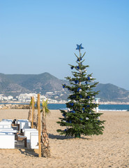 Christmas tree on sand beach