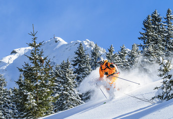 Wall Mural - im frischen Pulverschnee skifahren