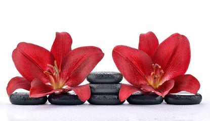 Obraz Czerwone lilie na kamieniach bazaltowych - fototapety do salonu