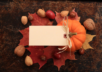 Blank cream tag on top of maple leaves, nuts and pumpkin