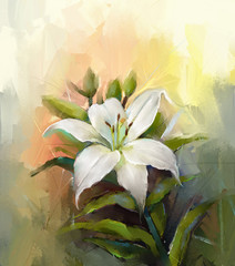 White lily flower.Flower oil painting
