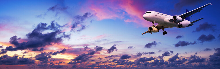 Wall Mural - Jet aircraft in a spectacular sunset sky