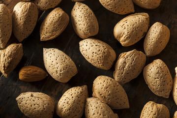 Raw Unshelled Organic Almonds