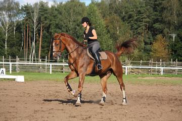 Brunette woman cantering on chestnut horse