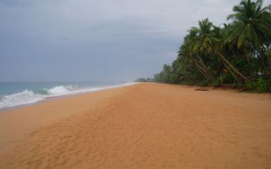 Picturesque  tropical beach. Sri Lanka