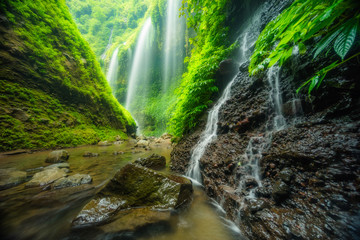 Aluminium Prints Indonesia Madakaripura waterfall in Bromo national park, East Java, Indonesia, Asia