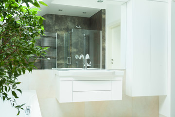Luxurious bathroom from the inside