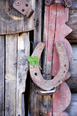Fototapete - Old horse shoe with clover leaf on wooden door outdoors