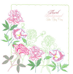 Background with flowers peonies and pink rose-02